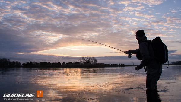 GuidelineFlyfish-Baltic Pike - Sunrise