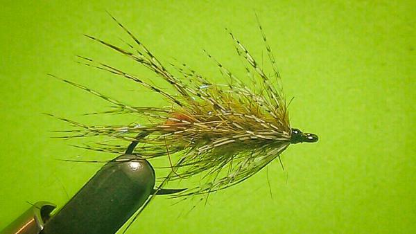 guidelineflyfish-blog-600px-microswing-1