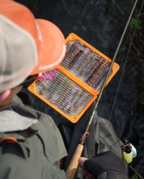 GL-LPs-nymphrods-1-20